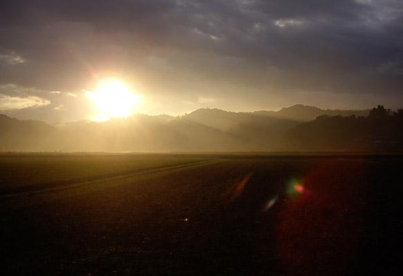 雨が上がり、もやがかかった空気に太陽の光が、、、