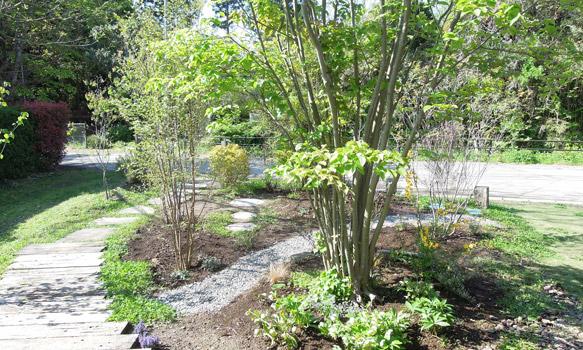 ホタルカフェの庭